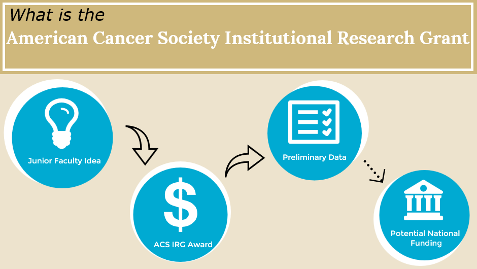 Cancer Center awarded prestigious ACS Institutional Research Grant