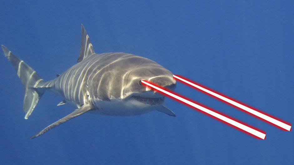 sharks with frickin lasers gold nanoparticles fry cancer on